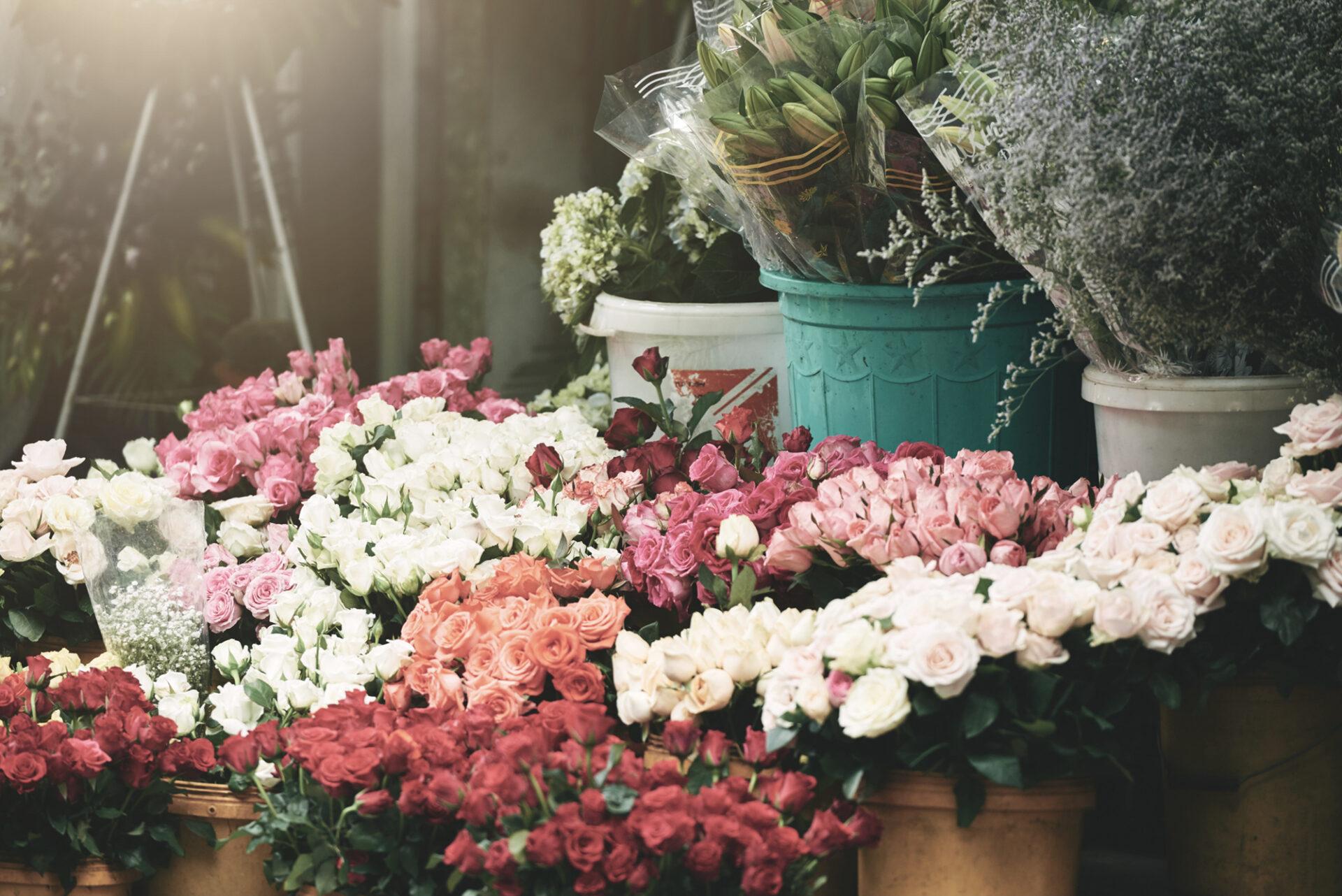 Bloemen Reynaert bloemenwinkel bloemenwinkel Oudenaarde snijbloemen